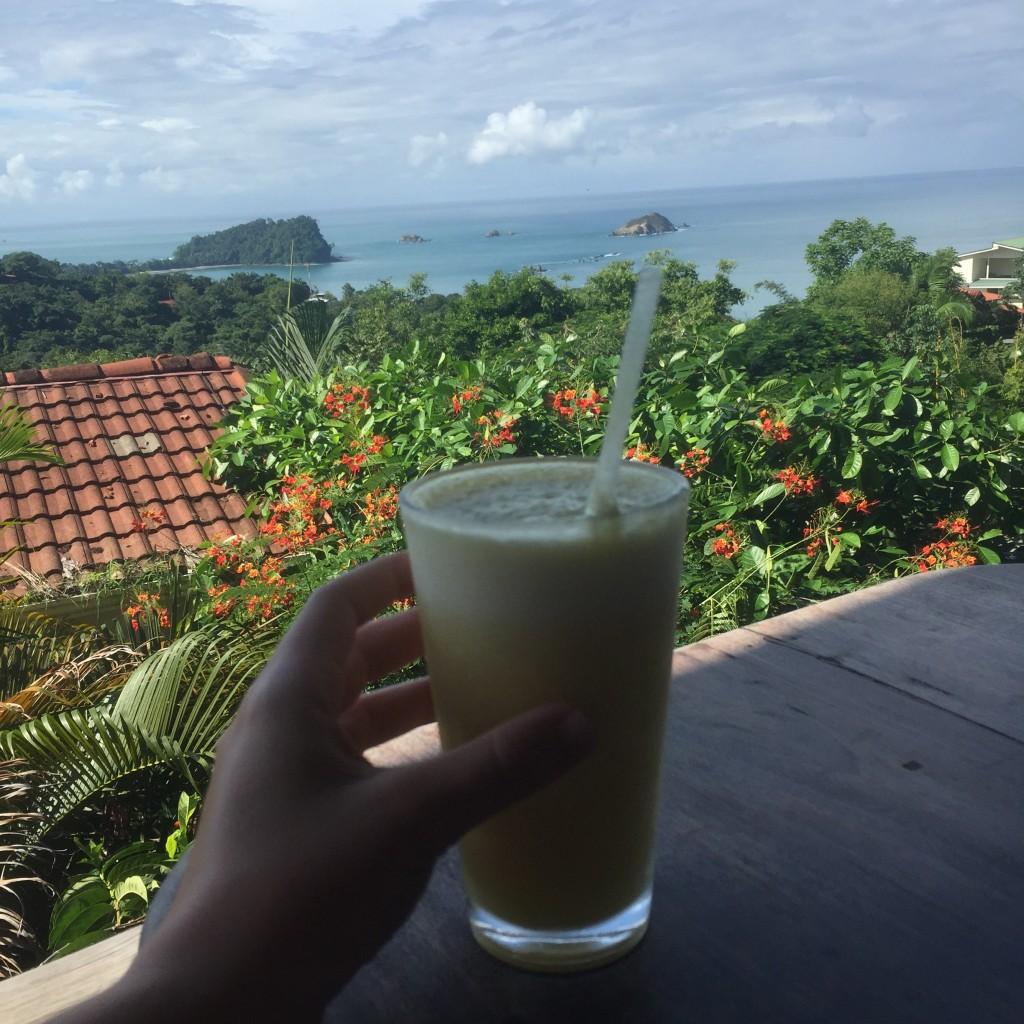 Costa Rica Juice