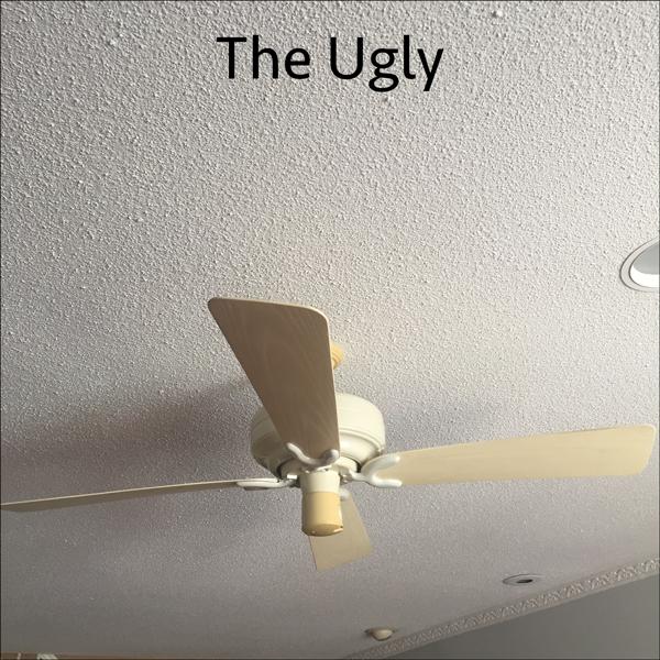Ugliest Ceiling Fan